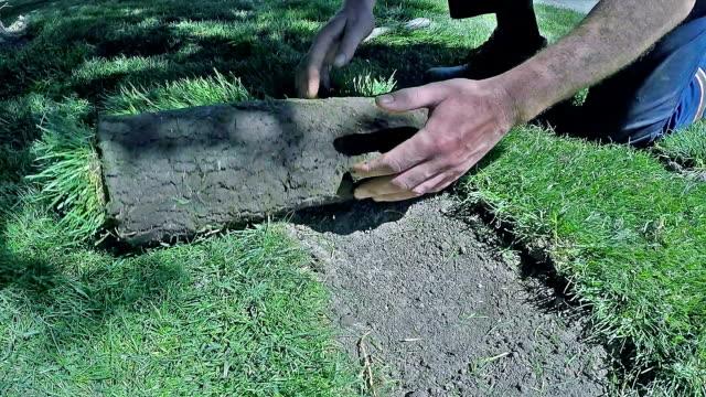 abrollen gras für neuen rasen - gärtnerisch gestaltet stock-videos und b-roll-filmmaterial