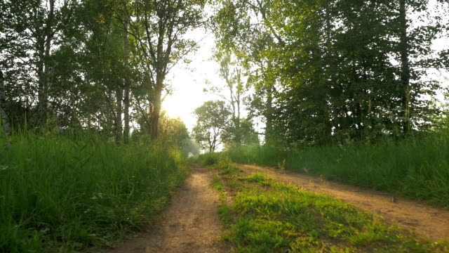 Unsurfaced Country Road at Dawn video