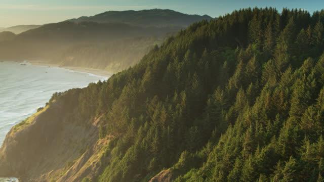 Upward Tilting Drone Shot of Waves Crashing on Tree Covered Cliffs on the Oregon Coast