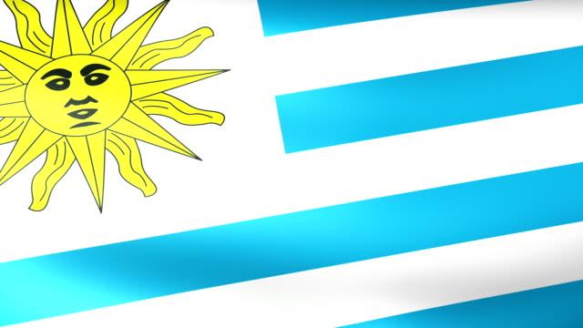 vídeos y material grabado en eventos de stock de bandera de uruguay saludar con la mano - civil rights