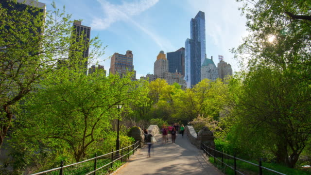 Usa new york summer day central park bridge city view 4k time lapse video
