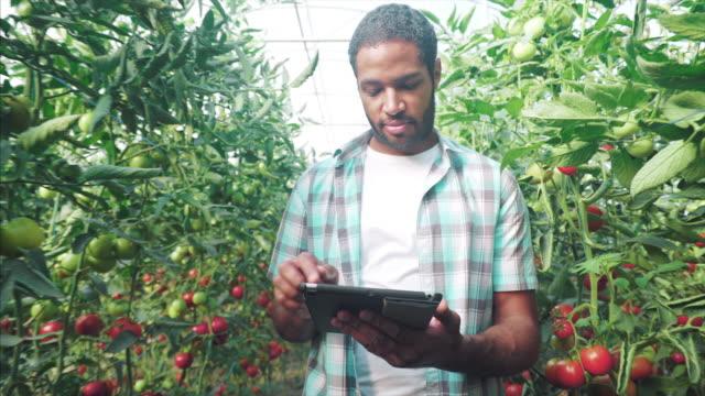 uso la tecnologia per ottenere i migliori risultati. - etnia video stock e b–roll