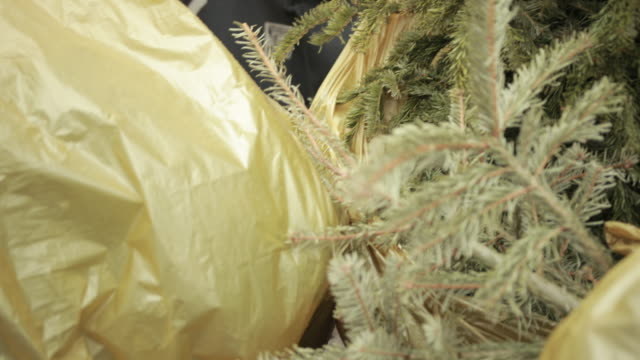 Used Christmas Trees Are Lying In Yellow Garbage Balls, Waiting For Recycling Used Christmas Trees Are Lying In Yellow Garbage Balls, Waiting For Recycling. Concept Ecology Problem, Mindless Deforestation, Flora. End Of Holidays And The New Year, Street, Unnecessary Things obsolete stock videos & royalty-free footage