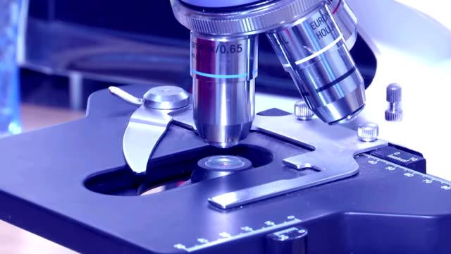unter verwendung eines mikroskops in der wissenschaft - wissenschaftlerin stock-videos und b-roll-filmmaterial