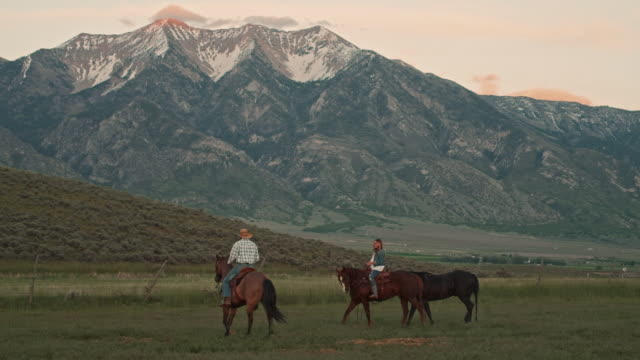 Utah couple on horses Young cowboy and cowgirl couple riding horses in sunset on open prairie filed with mountain range in the background. Outside Salt Lake Cit, Utah. prairie stock videos & royalty-free footage