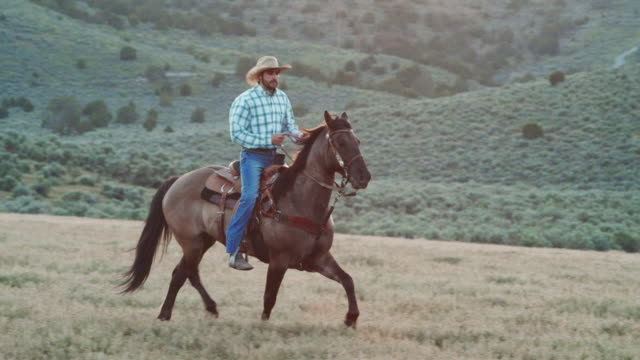 utah cowboy riding in sunset - rancher video stock e b–roll