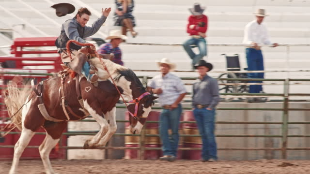 utah horse riding rodeo - rodeo stock videos and b-roll footage