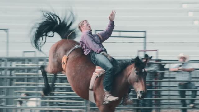 vídeos y material grabado en eventos de stock de rodeo de caballo horsel utah - rodeo
