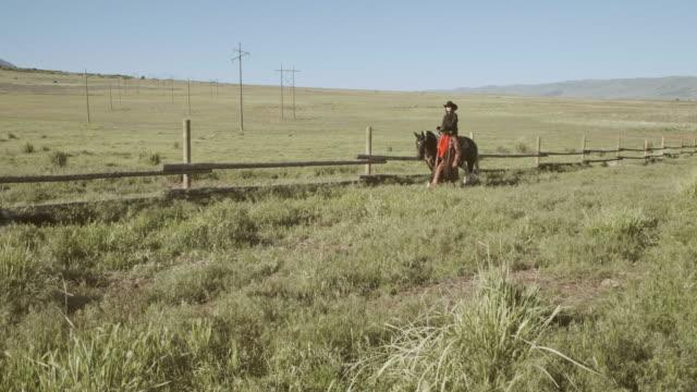 utah rancher and horse - grandangolo tecnica fotografica video stock e b–roll