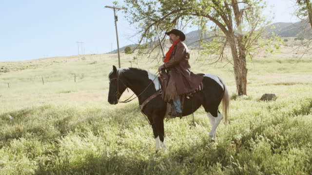 Utah Rancher and Horse A rancher and his horse. rancher stock videos & royalty-free footage