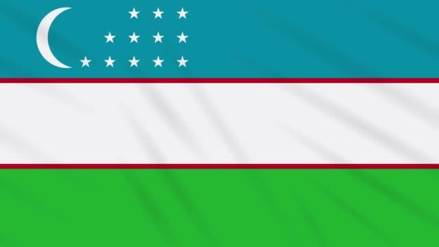 uzbekistan flag waving cloth, background loop - полумесяц форма предмета стоковые видео и кадры b-roll