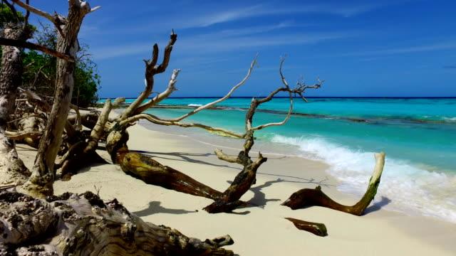 v02378 Maldives beautiful beach background white sandy tropical paradise island with blue sky sea water ocean 4k Maldives beautiful beach background white sandy tropical paradise island with blue sky sea water ocean 4k indian ocean islands stock videos & royalty-free footage