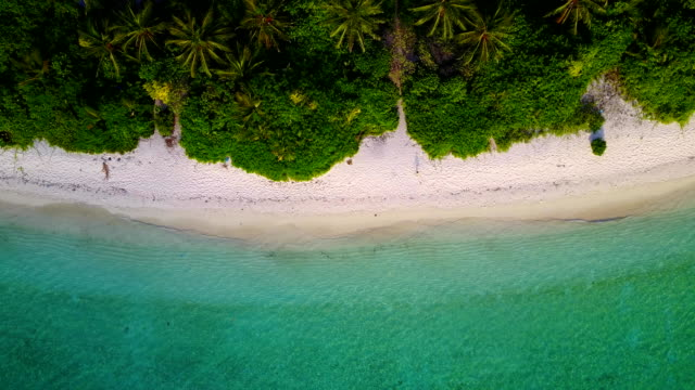 v04651 Aerial flying drone view of Maldives white sandy beach on sunny tropical paradise island with aqua blue sky sea water ocean 4k video