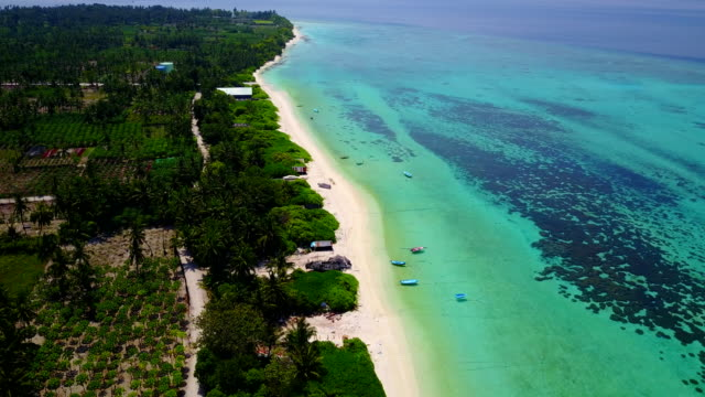 v04868 Aerial flying drone view of Maldives white sandy beach on sunny tropical paradise island with aqua blue sky sea water ocean 4k video
