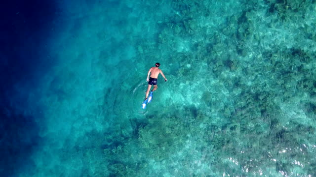 v06461 Aerial flying drone view of Maldives white sandy beach young people snorkeling swimming underwater on sunny tropical paradise island with aqua blue sky sea water ocean 4k Aerial flying drone view of Maldives white sandy beach young people snorkeling swimming underwater on sunny tropical paradise island with aqua blue sky sea water ocean 4k. scuba diving stock videos & royalty-free footage