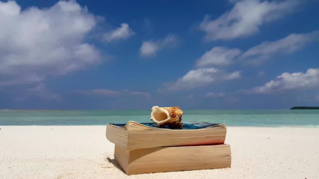 v07539 Maldives white sandy beach reading book shell on sunny tropical paradise island with aqua blue sky sea water ocean 4k video