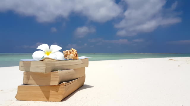 v07573 Maldives white sandy beach reading book on sunny tropical paradise island with aqua blue sky sea water ocean 4k video