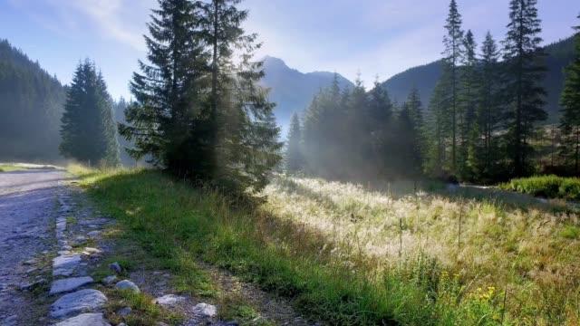 vídeos y material grabado en eventos de stock de valle chocholowska al amanecer, montañas tatra, polonia - polonia