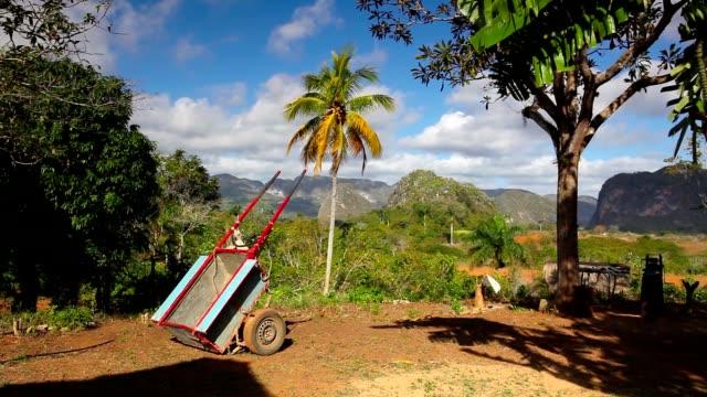 Valley de Vinales, Pinar del Rio, Cuba. video