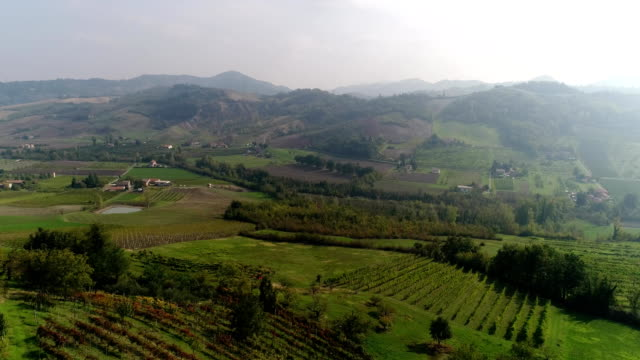 Valley with vineyards, Vineyards, a suggestive aerial video over a vineyards in an amazing tuscan landscape, panorama, suny day video