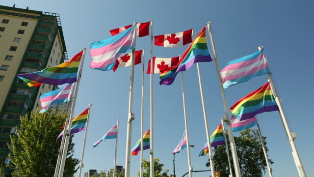 Vancouver, Transgender and Pride Flags video