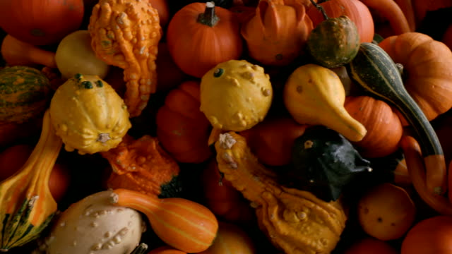 Various Gourds from Above in a Crate video