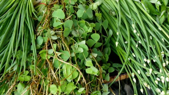 タイで育つさまざまな緑。カウンターの上のゆで卵。様々 なタイ料理とカウンターします。アジアの屋台 - 動物の身体各部点の映像素材/bロール