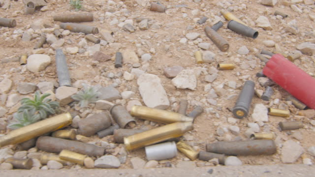 Various Gun Ammunition Shells on the Ground 4K pan shot of many types of shells on the ground at the gun range. animal shell stock videos & royalty-free footage
