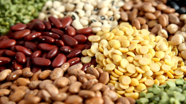 various legumes beans - noci video stock e b–roll