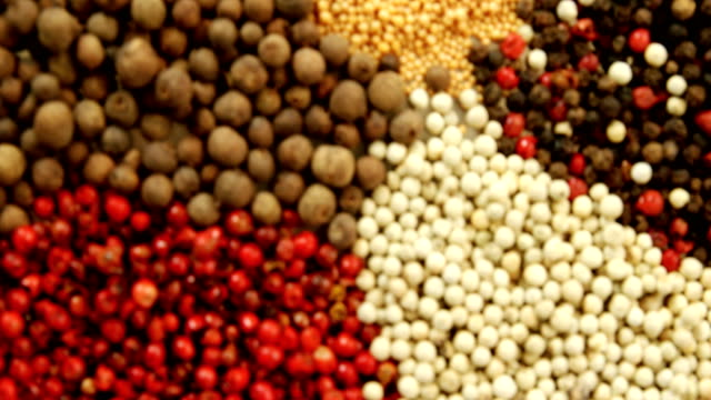 Various types of spices 4k video
