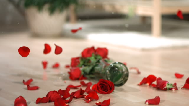Vase of red roses falling and breaking video