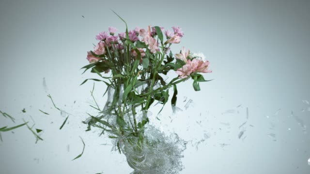 Vase with fresh flowers shattering in super slow motion