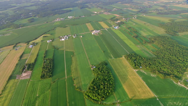 Video AERIAL Vast fields and farms in Quebec, Canada