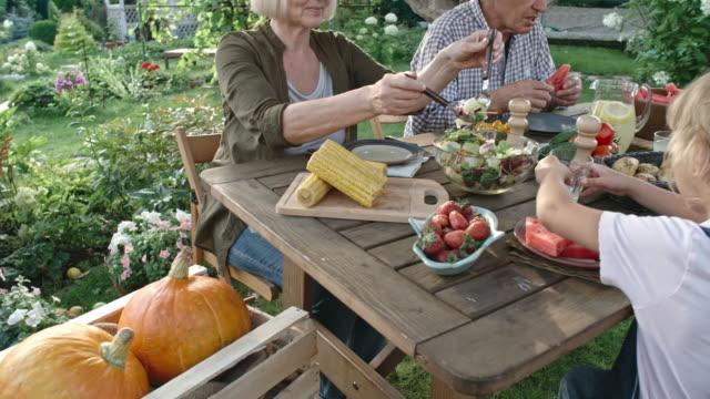 Família vegan comendo alimentos orgânicos no jardim - vídeo