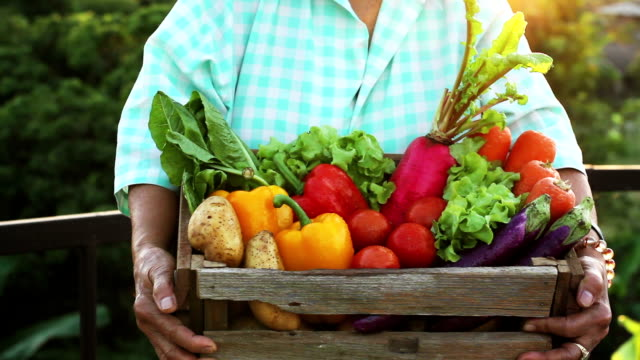 Vegetable and healthy eating video