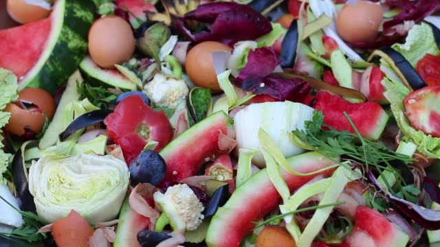 Vegetable kitchen scraps such as peels, skins, stalks Organic waste for vermicomposting close up leftovers stock videos & royalty-free footage