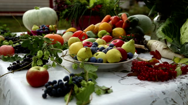 Vegetables are on the table Vegetables are on the table, a beautiful still life, apples, pears, onion, plum, grapes, cherries, cabbage, pumpkin, pepper, carrot, melon, radish, corn onion stock videos & royalty-free footage