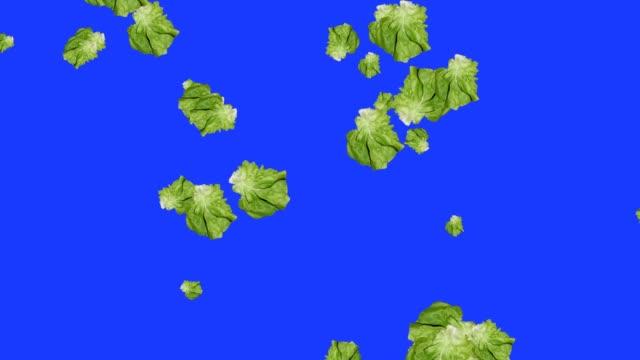 Vegetables falling animation chroma key element loop, salad video