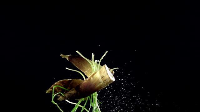 ローリングに野菜、黒色の背景 - 笹点の映像素材/bロール