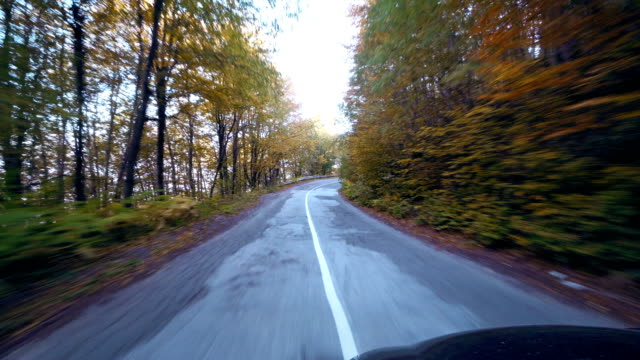 Vehicle point-of-view driving on rural road in mountain among autumn yellow trees video