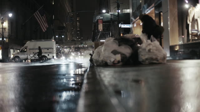 Vehicles on illuminated city street in night Vehicles moving on illuminated street. Beggar searching for garbage on sidewalk. View is on city at night. homeless person stock videos & royalty-free footage