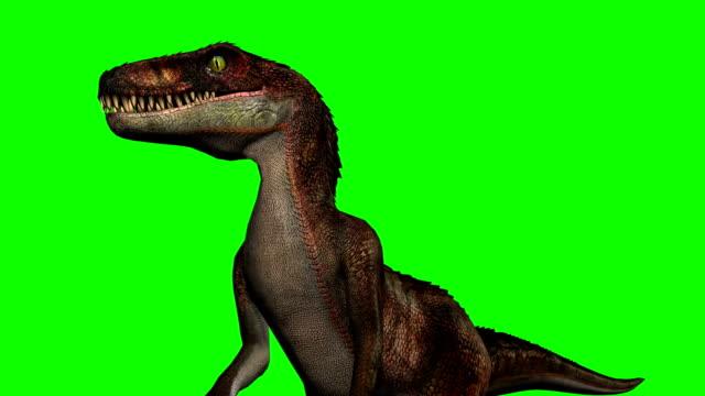 Tela de dinossauros Velocirapor ruge - verde - vídeo