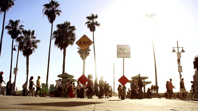 Venice Beach View video