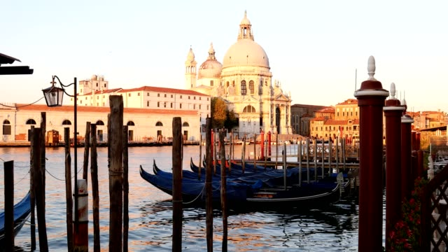 Venice, Saint Mary of Health basilica and Grand Canal with moored gondolas in the early morning light