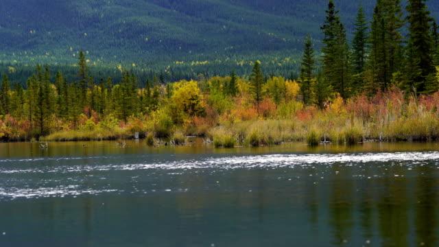 Vermilion Lakes in Banff National Park - video