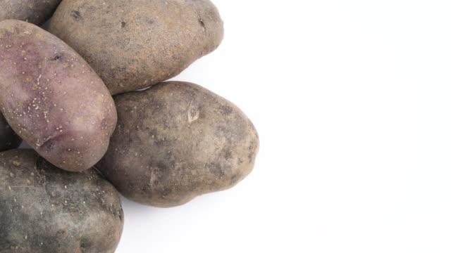 vertikale halbbild des violetten kartoffeln haufen. langsam rotierende auf der drehscheibe auf dem weißen hintergrund isoliert. hautnah. makro. kopieren sie raum. - knollig stock-videos und b-roll-filmmaterial