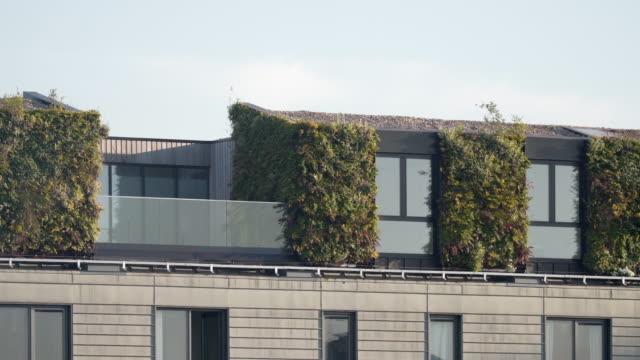 eine vertikale wohnwand an der seite eines mehrfamilienhauses - dachgarten videos stock-videos und b-roll-filmmaterial