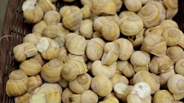 Vertical panoramic shot of frozen snails in a grocery supermarket ready for sale video