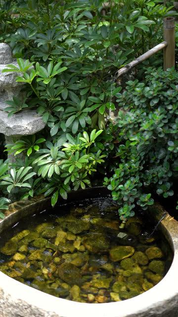Vertical real time Zen garden.