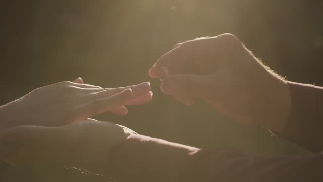 very beautiful newlyweds put rings on each other - mano donna dita unite video stock e b–roll